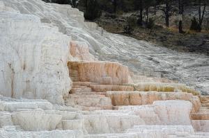 C507-Yellowstone-0343a_v1
