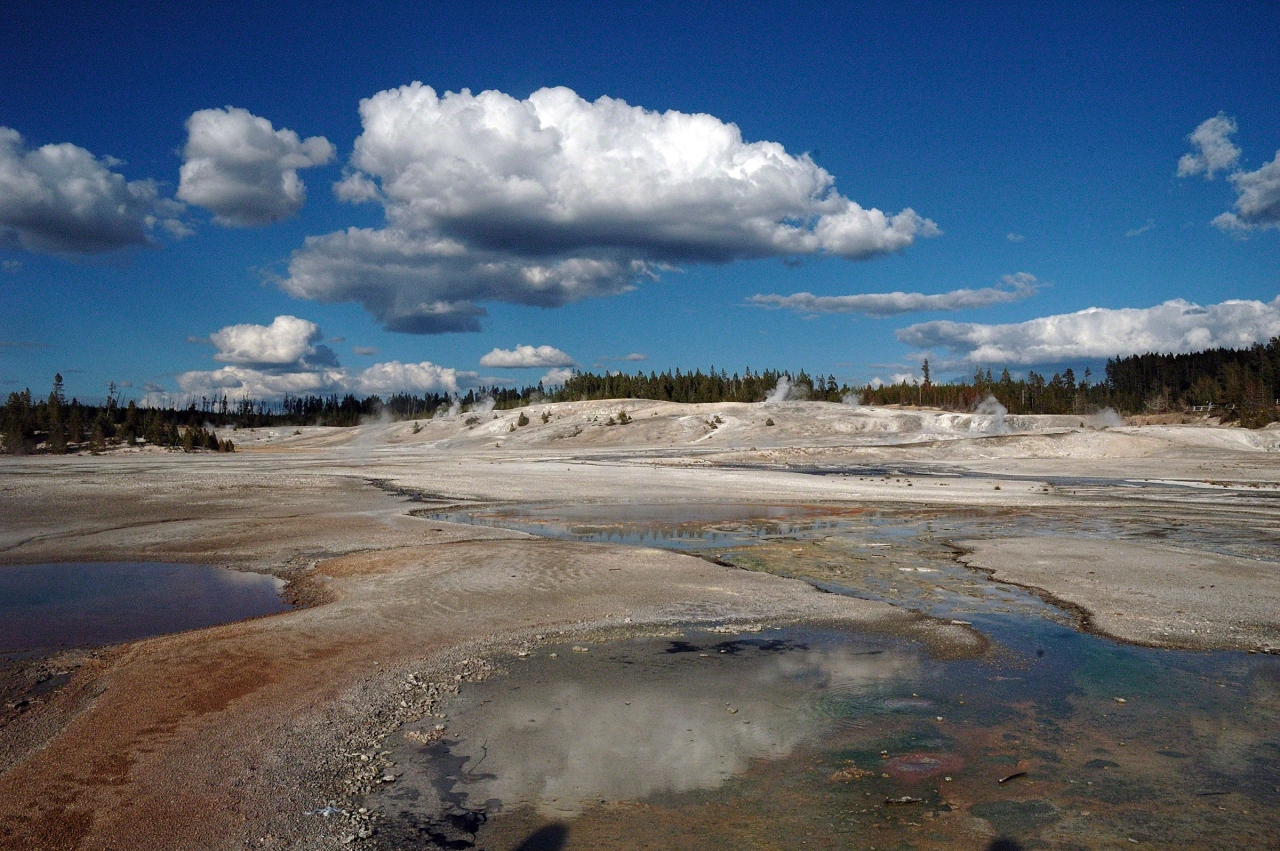 C507-Yellowstone-0937_v1