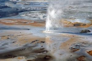C507-Yellowstone-0980_v1