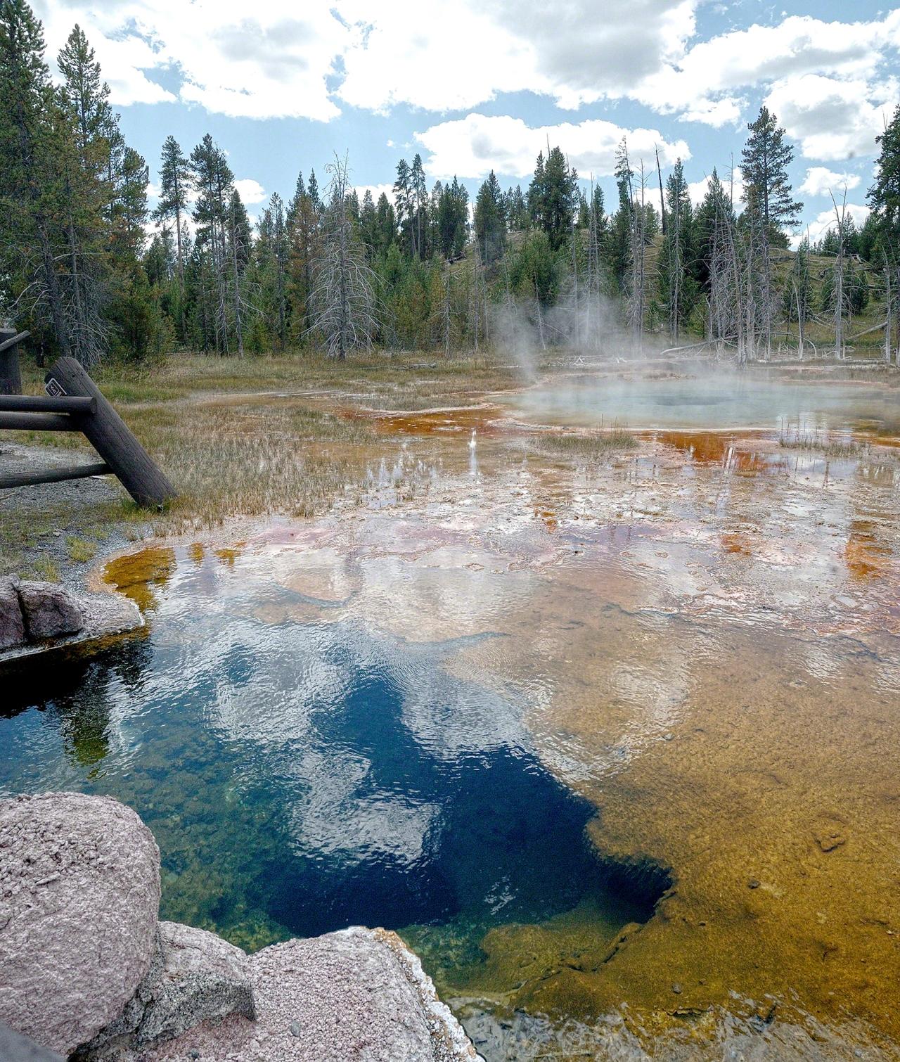 C507-Yellowstone-1113_2-UpperGeyserBasin_v1