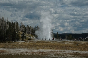 C507-Yellowstone-1238_v1