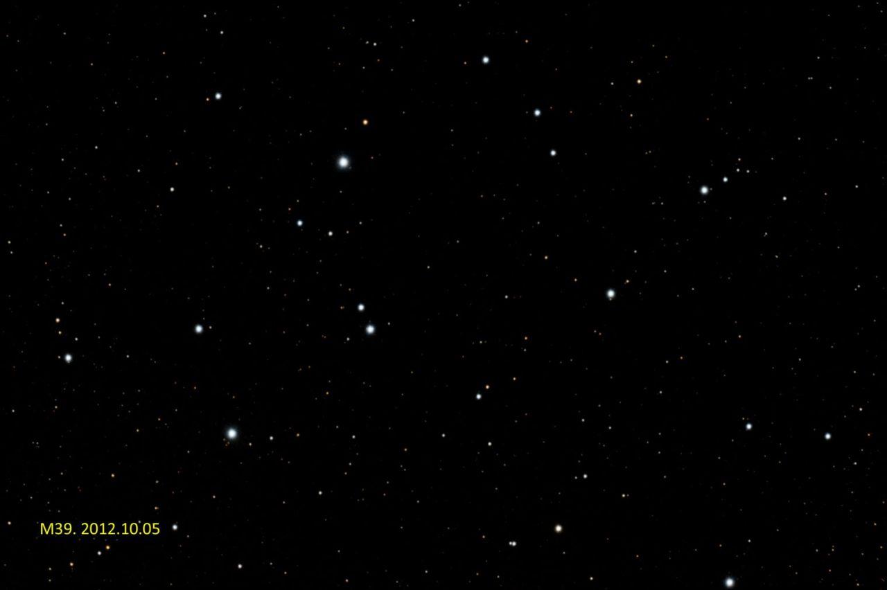 M39_DBE-His-PSbp