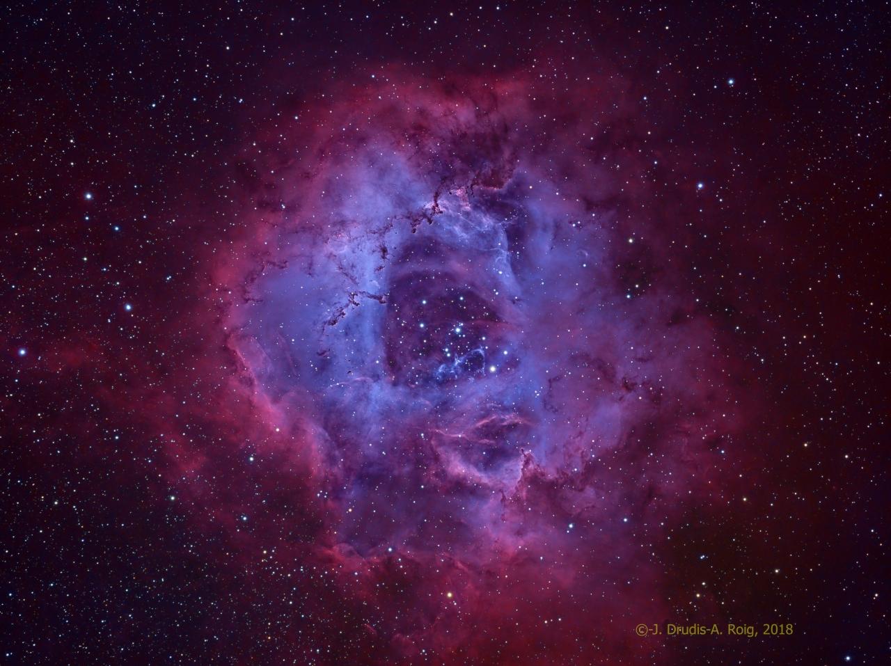 Rosette JM Drudis-Aleix Roig-HR